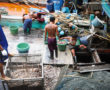 Five Thais, two Indonesians arrested in seafood slavery case