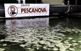 Pescanova creditors: All subsidiaries in bankruptcy will be rescued