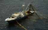 fishing-vessel-albacora