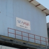 Honduras: Touring Seajoy shrimp's operations