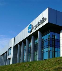 AquaChile заявила об убытке в размере 68,9 миллионов долларов США
